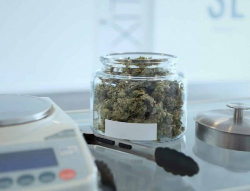 Medical Marijuana : It's (almost) Here